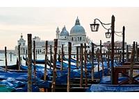Браво или В Венеции  Купер Джеймс скачать книгу